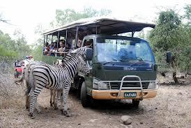 Safari And Nature Park Tours